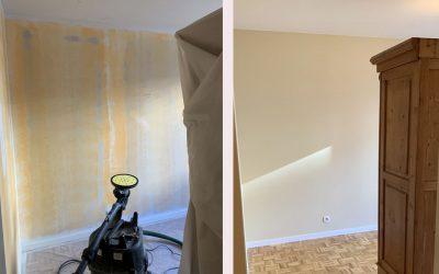 Rénovation plâtre et peinture séjour  – Parc de la Tête d'Or