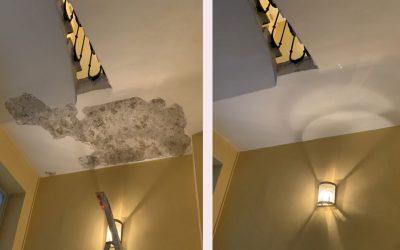 Plafond palier – Lyon 2°
